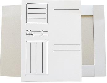 Dosare din carton